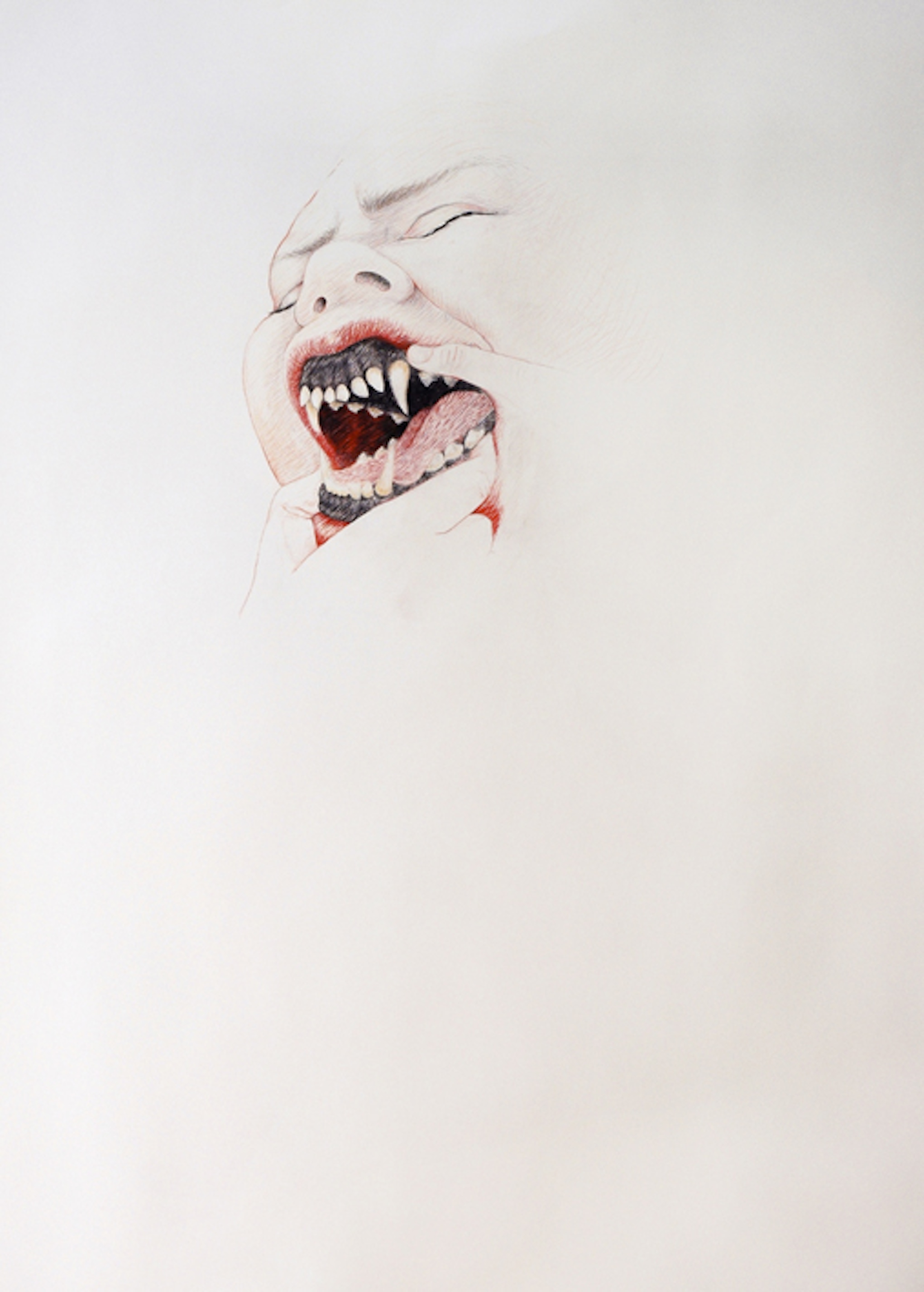 Bitt, coloured pencils on paper, 130 x 103 cm, 2009