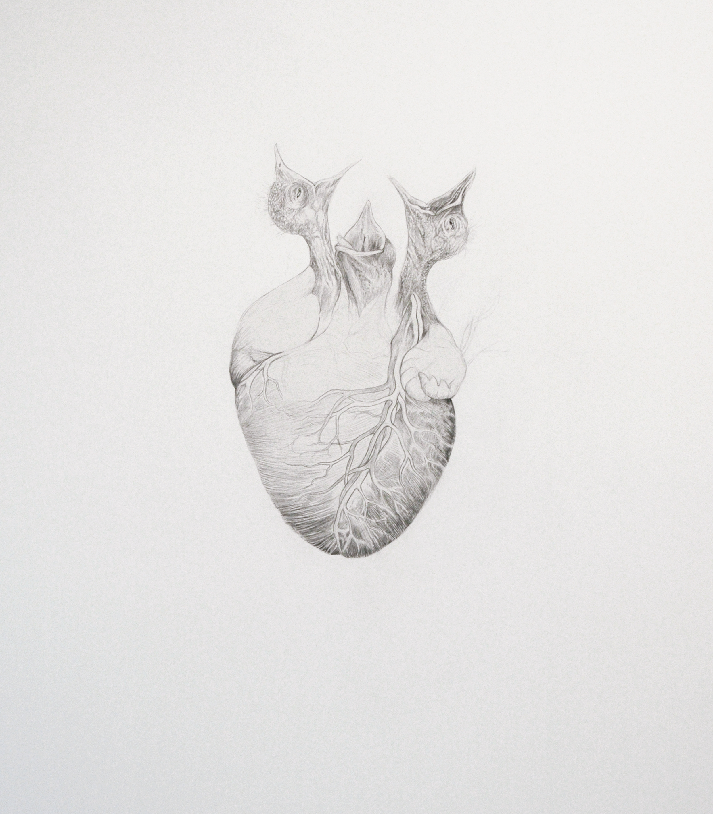 Hunger, graphite on paper, 44 x 33 cm, 2012
